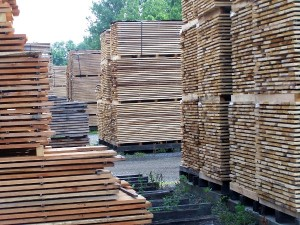 Lumber Stacks
