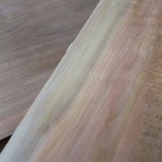 Fresh Milled Cherry Sapwood